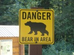 Danger bear